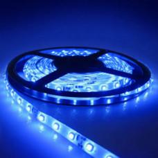 Лента светодиодная (IP65) SMD2835 - 60led/4,8Вт на метр 12В синяя LS