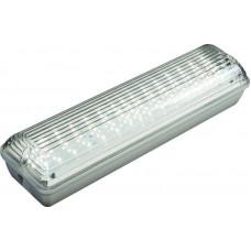 Светильник светодиодный влагозащищенный  FI 105 10W 4000К прозрачный